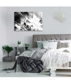 Obrazy czarno białe - Obraz plakat Dmuchawce czarno białe (1-częściowy) szeroki