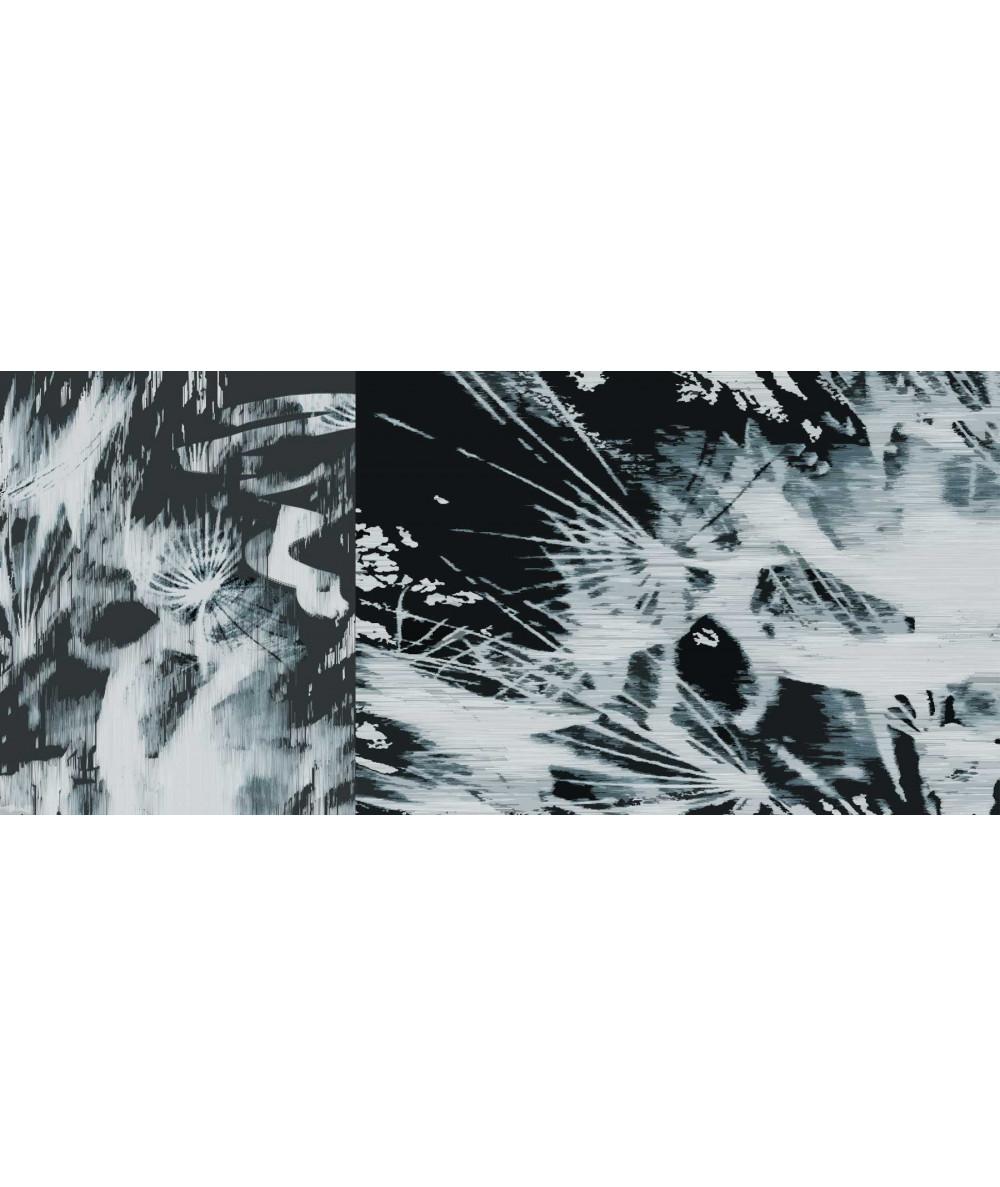 Obraz na płótnie Obraz Dmuchawce wybuch (2-częściowy) długi