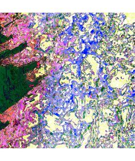 obrazy kwiaty Grafika na ścianę Słońce w lawendzie (1-częściowa) szeroka
