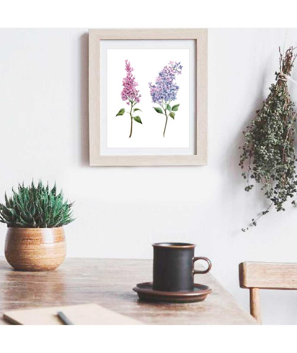 Obrazy z roślinami Botanika - Obrazek na białym tle Bez fioletowy i różowy
