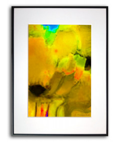 Plakat żółty w ramie na ścianę Żółte maki