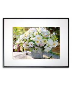 Plakat białe kwiaty Bukiet białych kwiatów
