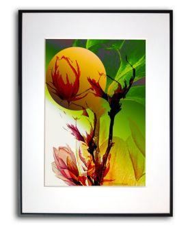 Plakat magnolia w ramie Chwila z magnolią