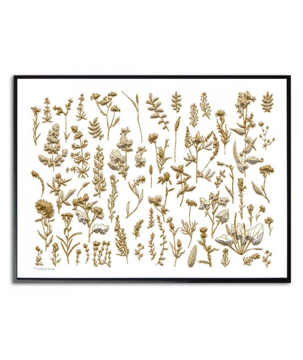 Plakat z ziołami na ścianę Dzikie zioła