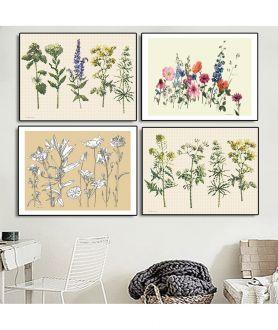Plakaty zioła na ścianie - Grafiki Obrazy