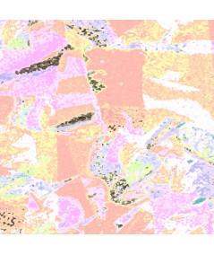 Obraz na płótnie Obraz las Idziemy dalej (1-częściowy) szeroki