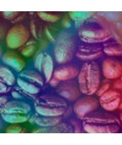 Obrazy kawa Mechico obraz plakat