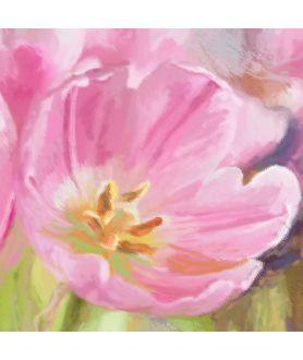 Sweet obraz Różowe tulipany obraz plakat