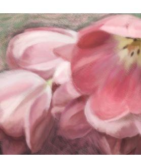 Różowy obraz Tulipany czerwone obraz plakat
