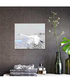 Obraz na płótnie Obraz Lot łabędzia (1-częściowy) szeroki