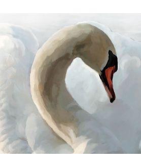 Obraz plakat dekoracyjny Obraz miłosny Miłość łabędzia