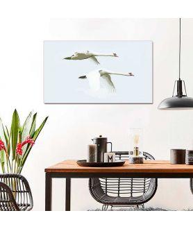Obraz na płótnie Obraz w stylu industrialnym Dwa łabędzie