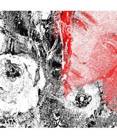Obraz na płótnie Obraz czarno czerwony Makowa panienka