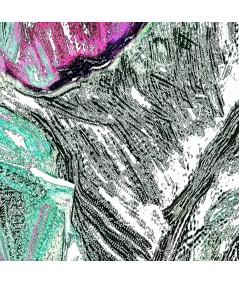 Obraz Tropikalny liść (1-częściowy) pionowy