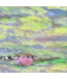 Nowoczesny obraz plakat Obraz pejzaż lilie wodne Nenufary