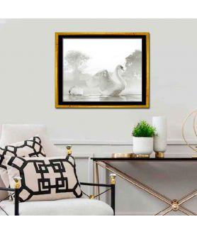 Obraz plakat dekoracyjny Obraz z łabędziami Piękne łabędzie