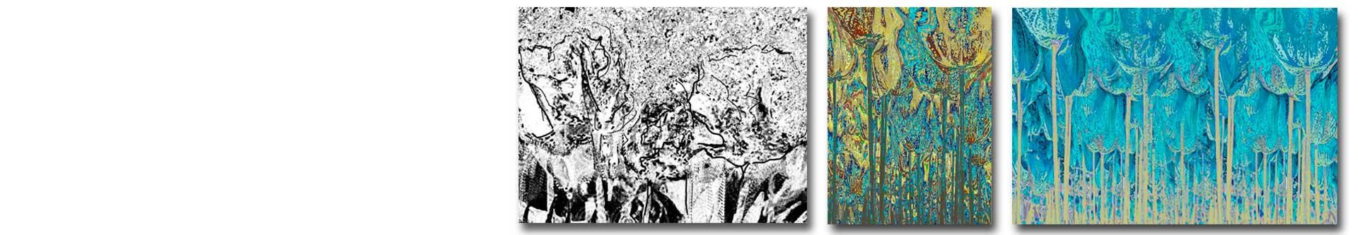 Obrazy las, grafiki las -obrazy kolorowe i obrazy czarno białe - grafikiobrazy.pl