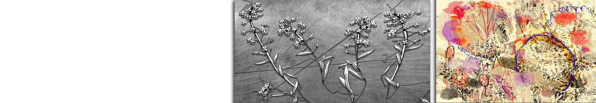 Obrazy kwiaty abstrakcja • Grafiki Obrazy