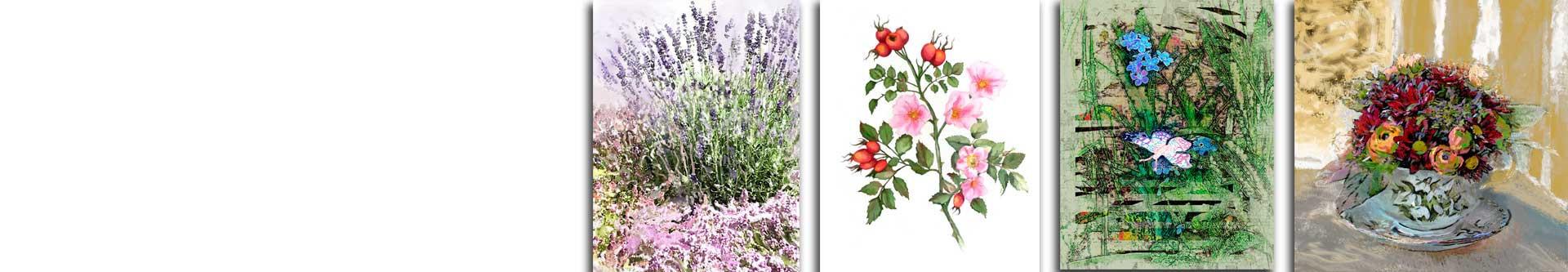 Obrazy z roślinami Botanika - obrazy botaniczne • Grafiki Obrazy