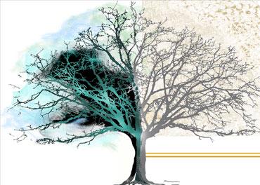 Obrazy plakaty drzewo - GrafikiObrazy.pl