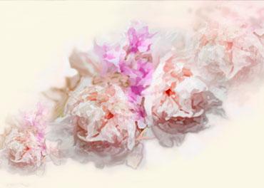 Obrazy plakaty kwiaty - GrafikiObrazy.pl